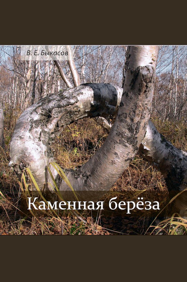 Быкасов В. Е. Каменная берёза