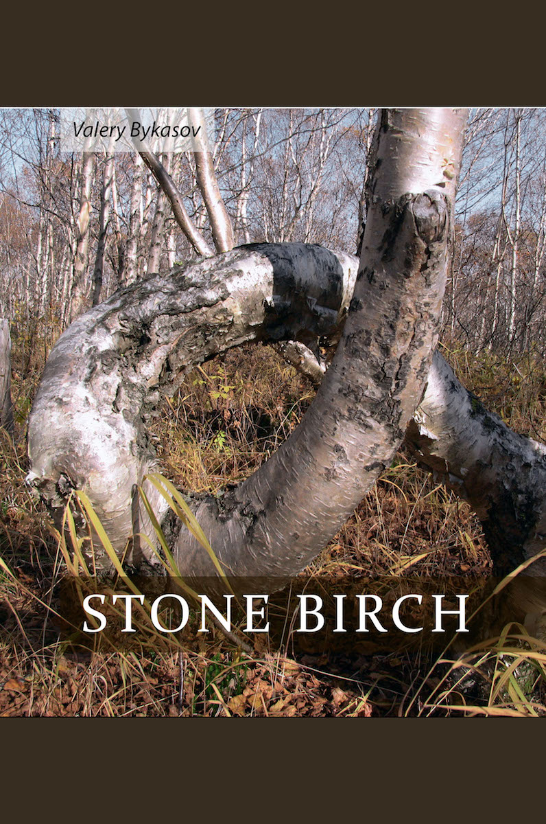 Stone Birch by Valery Bykasov Cover