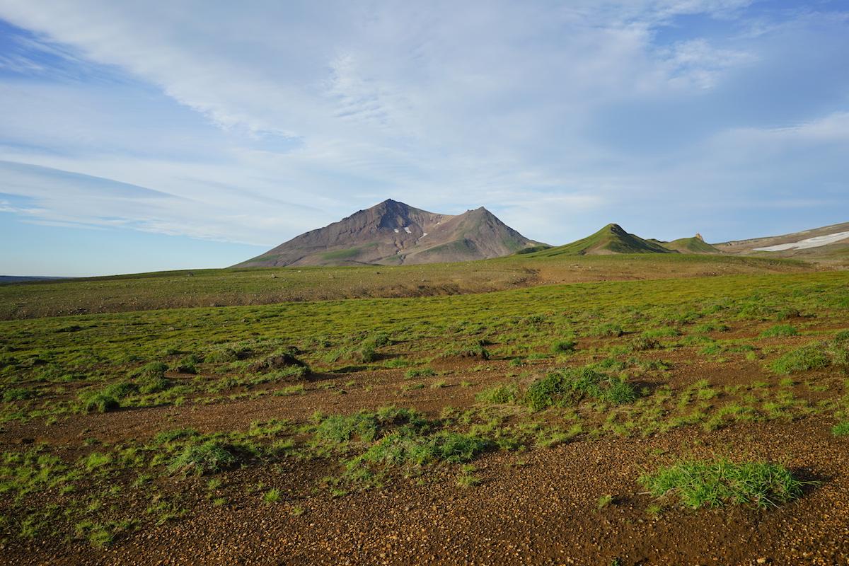Гольцовый горно-тундрово-луговой тип местности