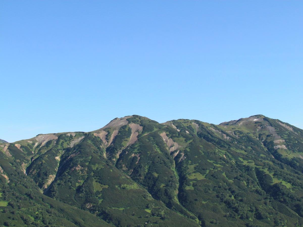 Подгольцовый горно-стланиковый тип местности