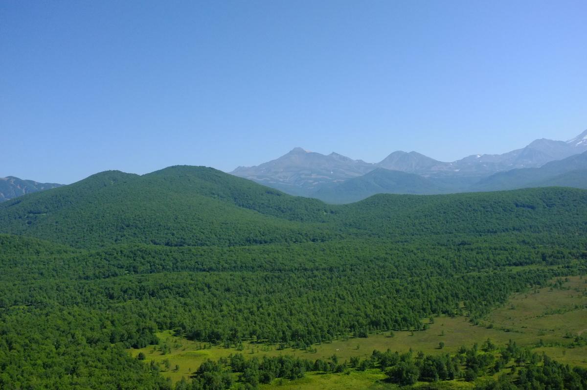 Склоновый горно-лесной и предгорный холмисто-увалистый типы местности