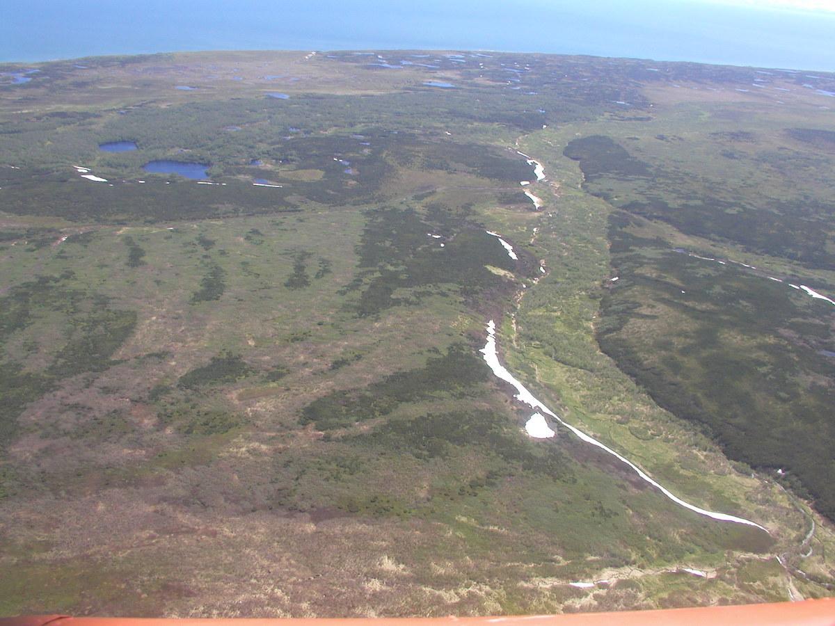 Равнинный холмисто-увалистый тундрово-болотно-луговой тип местности